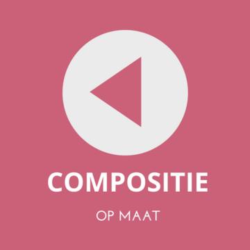muziek compositie op maat